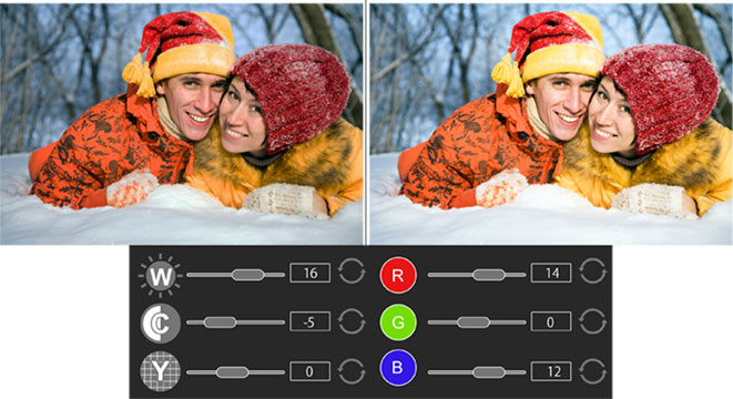 Manage BCG and RGB according to the photo features in Photo Xpress