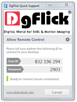 Team Viewer- Personalized free utility to connect with DgFlick support.